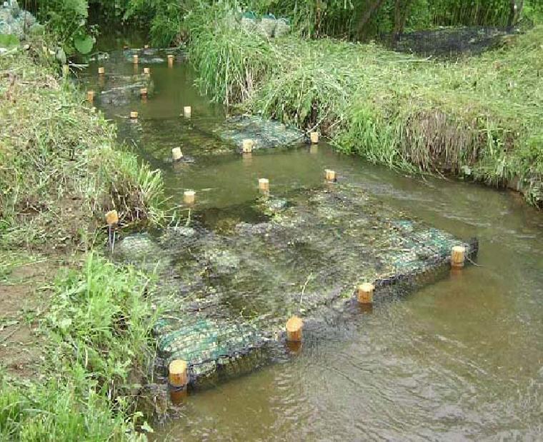 水質浄化材
