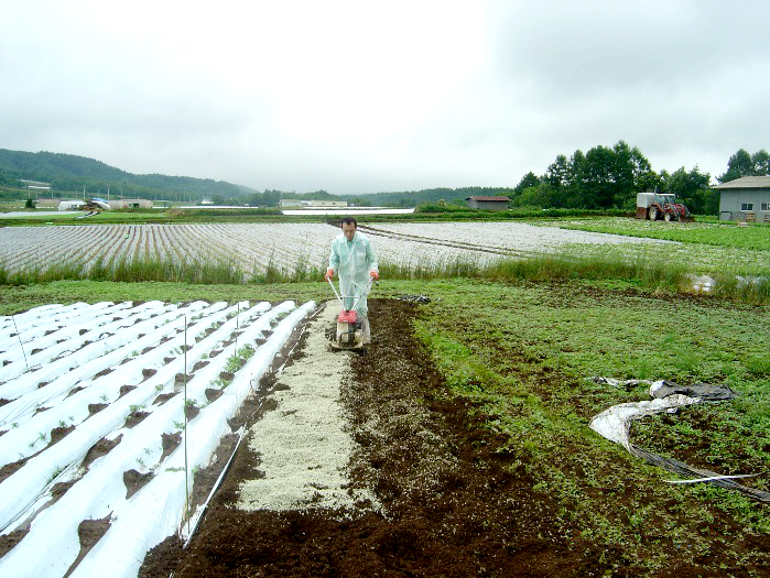 NEXTONE-αの農業用保水材施工例