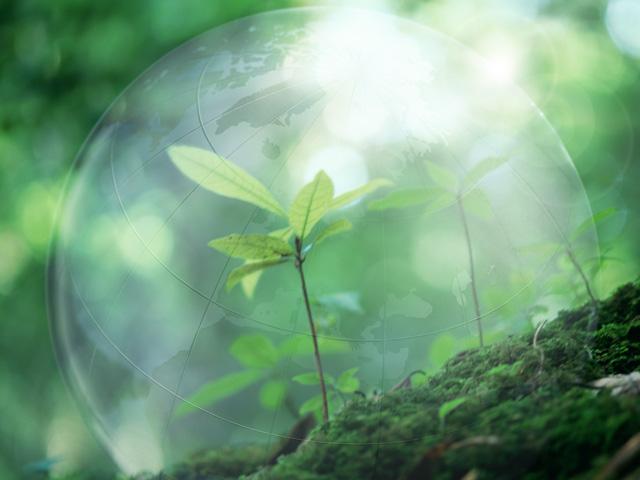 NEXTONE-αによる緑化